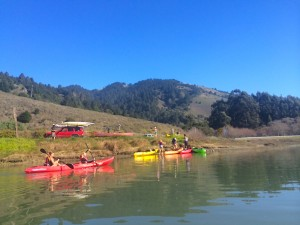 Kayaking Bolinas Lagoon