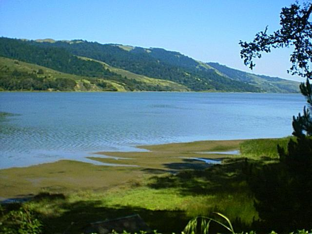 Vintage view of Bolinas Lagoon